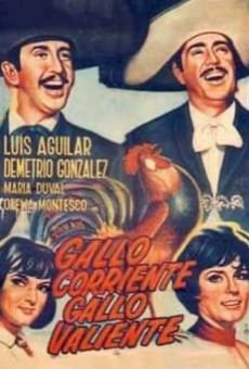 Ver película Gallo corriente, gallo valiente