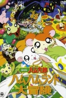 Ver película Gekijô ban Tottoko Hamutaro: Hamu hamu rando dai bôken