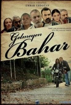 Ver película Gelmeyen Bahar