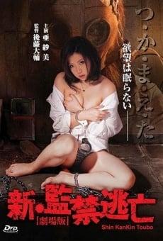 Shin kankin tôbô: Gekijô-ban