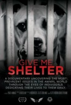 Película: Give Me Shelter