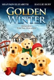 Ver película Golden Winter