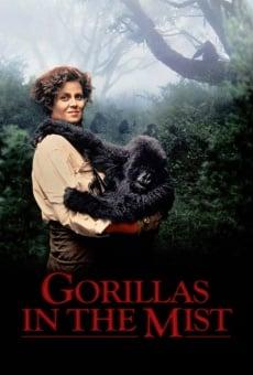 Gorilas en la niebla. La aventura de Dian Fossey online