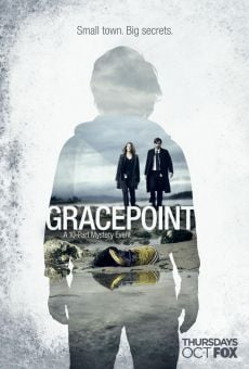 Ver película Gracepoint