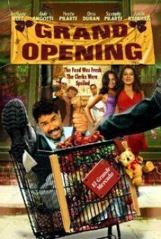 Ver película Grand Opening