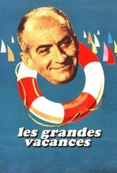 Ver película Grandes vacaciones