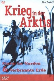 Krieg in der Arktis - Sturm im Norden (War in the Arctic) on-line gratuito