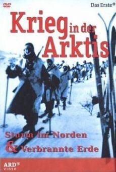 Krieg in der Arktis - Sturm im Norden (War in the Arctic) online kostenlos