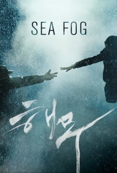 Haemoo on-line gratuito