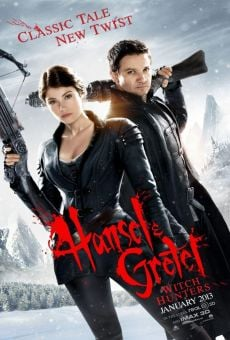 Hansel and Gretel: Witch Hunters online