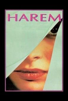 Ver película Harem