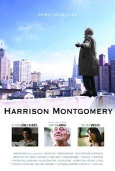 Watch Harrison Montgomery online stream