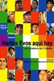 Hartos Evos aquí hay. Los cocaleros del Chapare en ligne gratuit