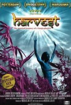 Harvest on-line gratuito