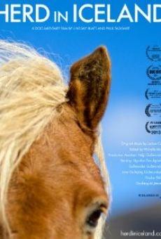 Watch Herd in Iceland online stream