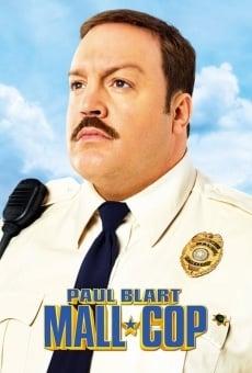 Ver película Héroe de centro comercial