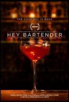 Hey Bartender online