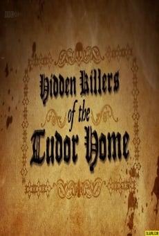 Ver película Hidden Killers of the Tudor Home