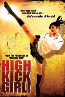 Ver película High Kick Girl!