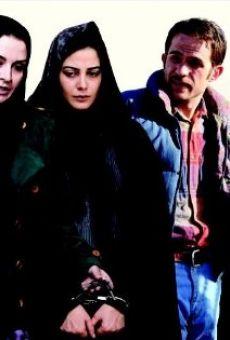 Ver película Hiss Dokhtarha Faryad Nemizanand