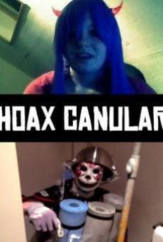 Ver película Hoax_canular