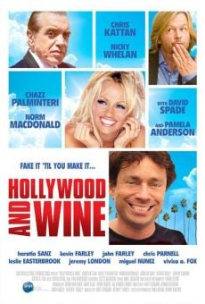 Película: Hollywood & Wine