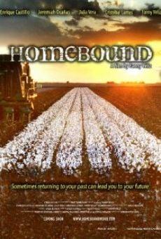 Watch Homebound online stream