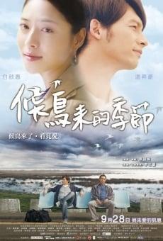 Ver película Mi querido Stilt