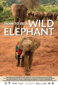 Película: How to Be a Wild Elephant