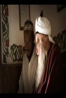 Ver película Ibn Arabi, el esplendor de Al-Andalus
