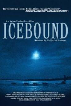 Ver película Icebound