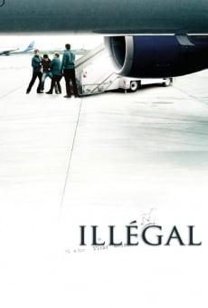 Ver película Illégal