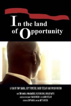 In the Land of Opportunity