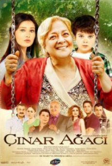 Película: Çinar agaci
