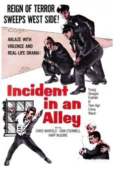 Incident in an Alley online kostenlos