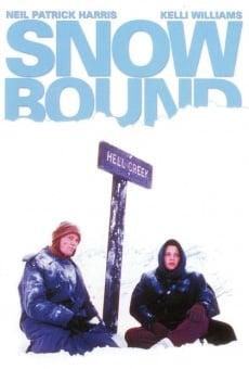 Ver película Infierno bajo la nieve