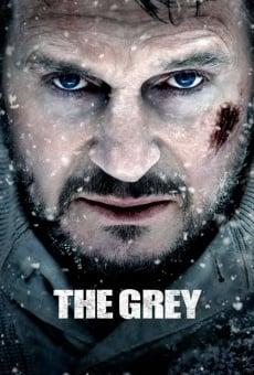 The Grey online