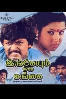 Ver película Ingeyum Oru Gangai