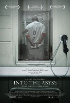 Ver película Into the Abyss