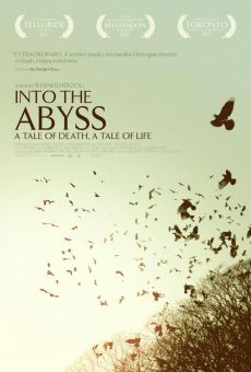 Into the Abyss - A Tale of Death, a Tale of Life online