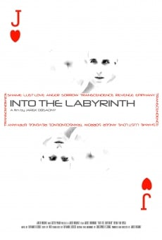 Watch Into the Labyrinth online stream