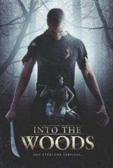 Into the Woods online streaming