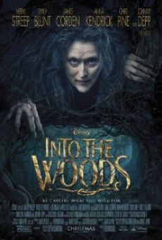 Into the Woods on-line gratuito
