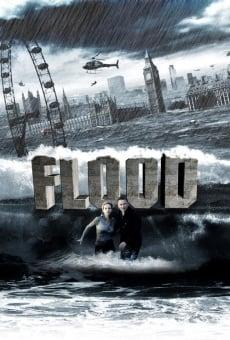 Ver película Inundación