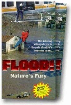 Inundación online gratis