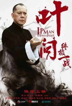 Ip Man: The Final Fight online free