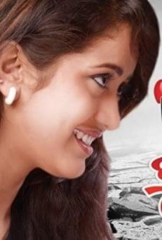 Ver película Ishq Tu Hi Tu