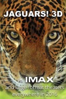 Jaguars 3D online