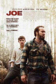 Ver película Joe