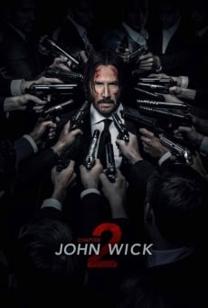 John Wick: Chapter 2 online